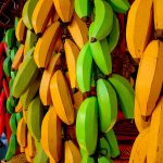 Colored Bananas flickr photo by Cleber Quadros shared under a Creative Commons (BY-NC) license