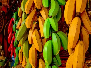 "<a title=""Colored Bananas"" href=""https://flickr.com/photos/cleberquadros/3834587963"">Colored Bananas</a> flickr photo by <a href=""https://flickr.com/people/cleberquadros"">Cleber Quadros</a> shared under a <a href=""https://creativecommons.org/licenses/by-nc/2.0/"">Creative Commons (BY-NC) license</a> </small>"