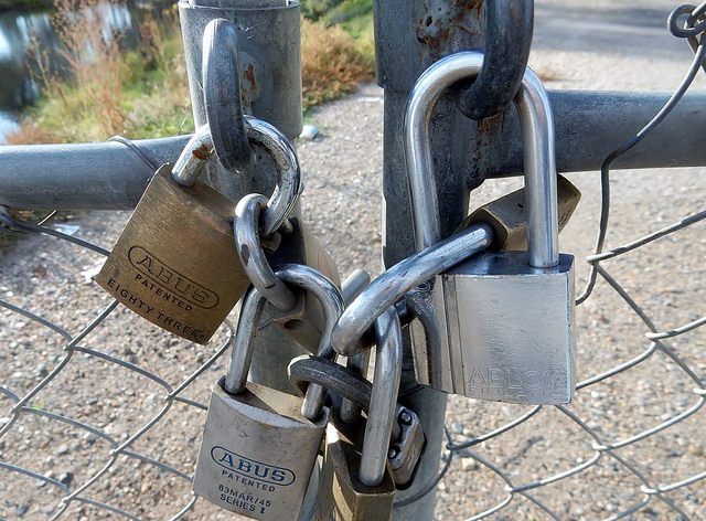 Picture of multiple locks on a chain holding a gate.