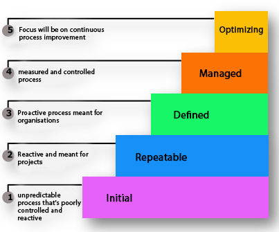 Models and Standards for Software Process Improvement